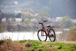 Praktikus eszköz a kerékpártartó